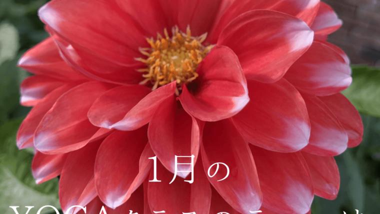マントラと呼吸につながるYOGA〜1月は「始まり」をテーマに。